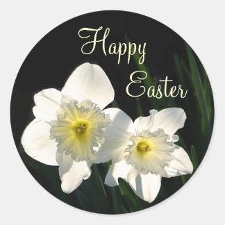 Daffodils da páscoa adesivo