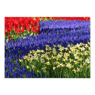 Daffodils, jacinto e flores amarelas das tulipas convites