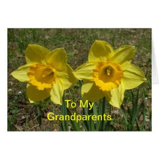 Daffodils para meu dia das avós das avós cartão