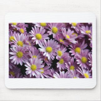 daisies.JPG roxo Mouse Pad