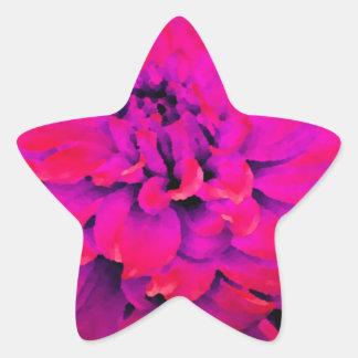 Dália - lua de mel - profundamente - rosa vermelha adesito estrela