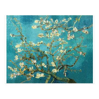 ~ das flores da amêndoa do ~ de Van Gogh por Smaca Cartões Postais