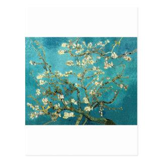 ~ das flores da amêndoa do ~ de Van Gogh por Smaca Cartão Postal