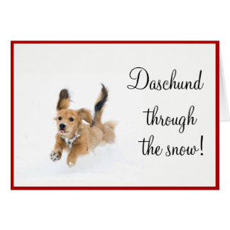 Daschund através da neve! Cartão