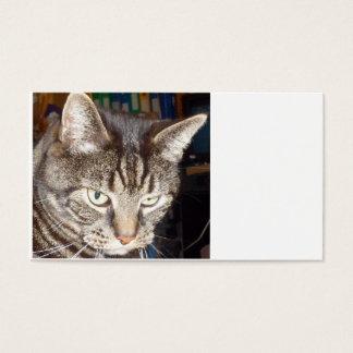 Dave que olha o cartões de visitas