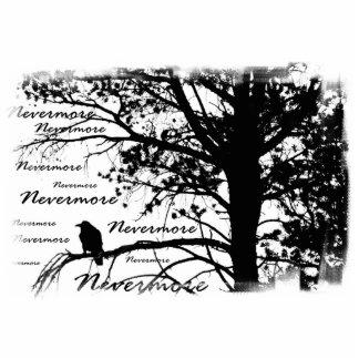 De B&W silhueta do corvo nunca mais Esculturafoto