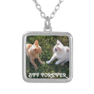 De BFF para sempre - dos melhores amigos gatos Colar Com Pendente Quadrado