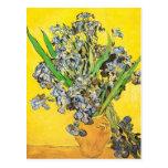 De Van Gogh vaso da vida ainda, belas artes das ír Cartão Postal