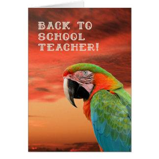 De volta ao cartão de professor com papagaio
