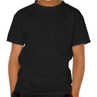 Decalque azul e branco feito sob encomenda da camiseta