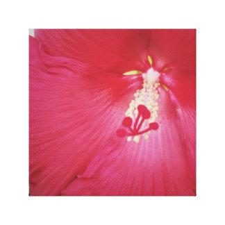 Decoração vermelha das canvas da flor do hibiscus