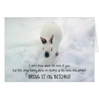 """""""Deixe-o cartão de Snowbunny"""":)"""
