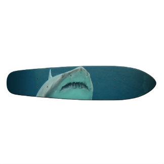 Dentes do tubarão skate