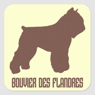 DES Flandres de Bouvier Adesivo Quadrado