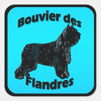 DES Flandres de Bouvier - turquesa Adesivo Quadrado