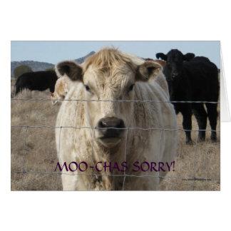 Desculpa branca preta engraçada da vaca do MOO - r Cartões