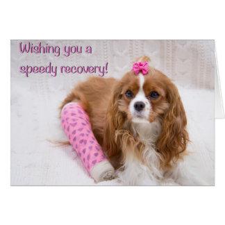 Desejando lhe um cartão do Spaniel da recuperação