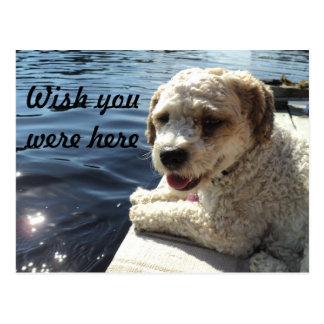 Desejo você estava aqui cartão