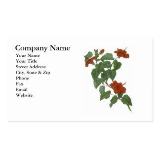 Desenho botânico da flor do hibiscus cartão de visita