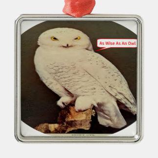 desenho branco da coruja ornamento quadrado cor prata