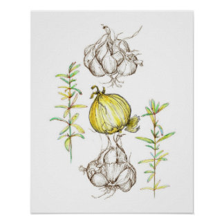 Desenho da erva de Rosemary do alho das cebolas da Pôster