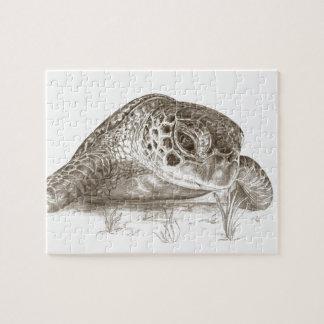 Desenho da tartaruga de mar verde quebra-cabeça