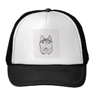 Desenho do cão boné