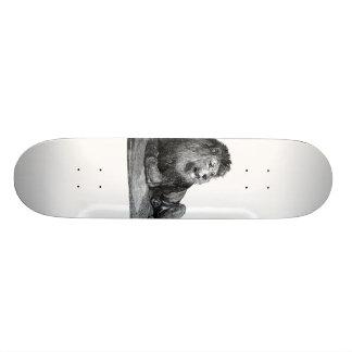 Desenho do leão do vintage, estabelecendo a vista  skates