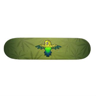 Desenhos animados Budgie Skate