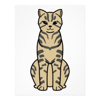 Desenhos animados do gato de Li do dragão Modelo De Panfletos