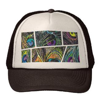 Desenhos animados do pavão - bonés
