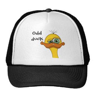 Desenhos animados impares engraçados do pato boné