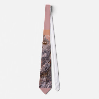 Desenhos da caverna gravata