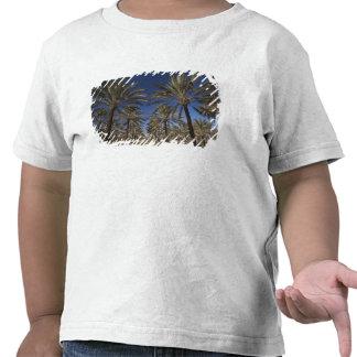 Deserto de Tunísia, Sahara, Douz, zona Camiseta