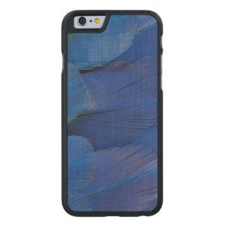 Design azul da pena do Macaw do jacinto