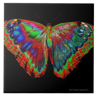 Design colorido da borboleta contra o contexto