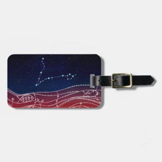 Design da constelação dos peixes etiqueta de bagagem
