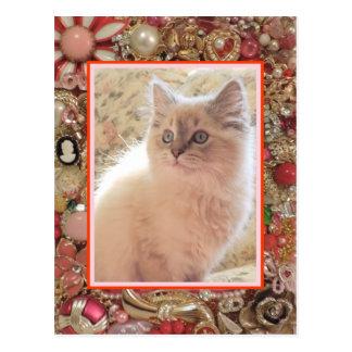 Design da foto da jóia do vintage do amante do cartão postal