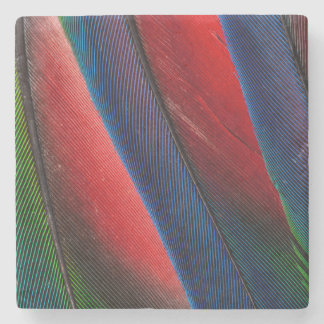 Design da pena do papagaio de Amazon Porta Copos De Pedra