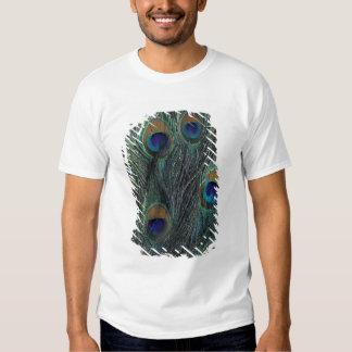 Design da pena do pavão t-shirt