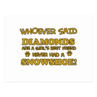 Design da raça do gato do sapato de neve cartão postal