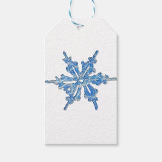 Design do floco de neve do inverno para Xmas 3