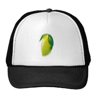 Design do limão do vetor boné