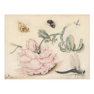 Design do vintage com com um cor-de-rosa cartão postal