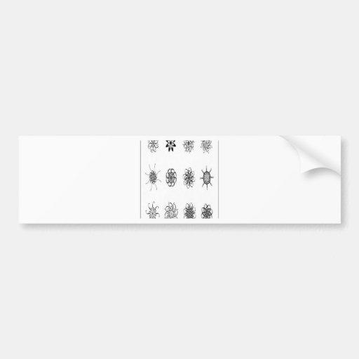 Design dos vetores dos padrões da letra adesivo
