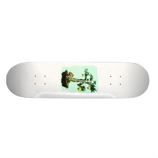 Design gráfico frutificando da imagem da fruta do  shape de skate 20,6cm