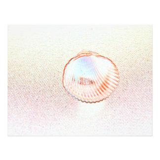 design invertido do seashell do esboço do escudo panfletos coloridos