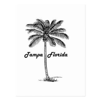 Design preto e branco de Tampa & de palma Cartão Postal