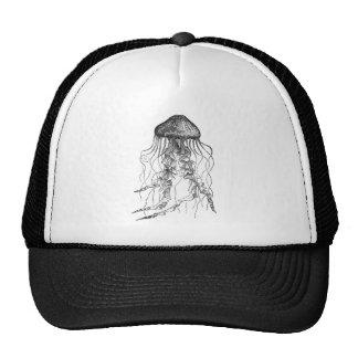 Design preto e branco do esboço do lápis das medus bonés