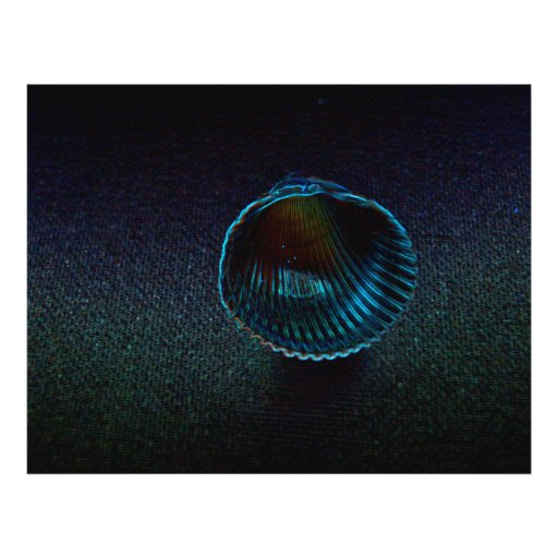 design temático da praia de néon escura do escudo modelos de panfleto